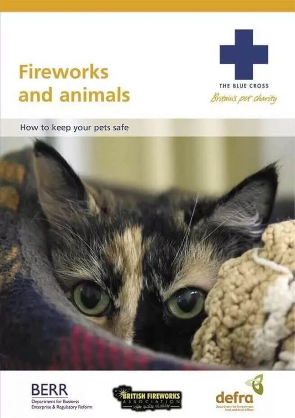 How to keep your pets safe leaflet by the blue cross